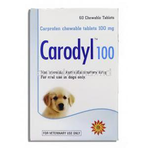 Generic Rimadyl, Carprofen 100 mg box