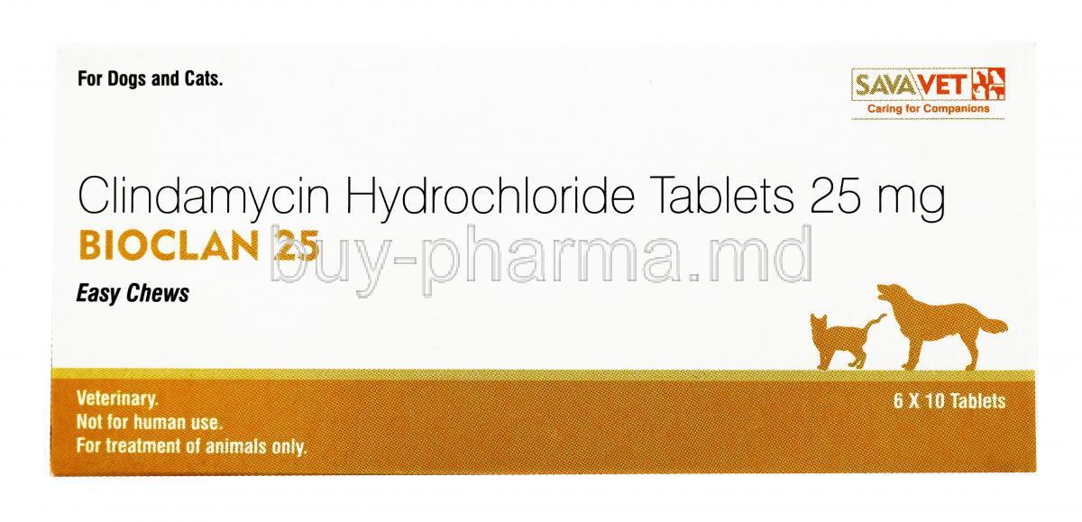 Clindamycin Hydrochloride Cats